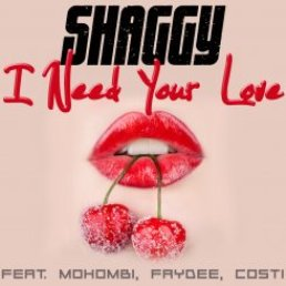 shaggy-i-need-your-love-webjpg